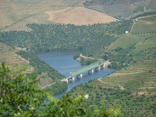 Ponte ferroviária sobre o rio Douro