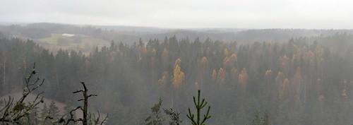autumn forest finland landscape geotagged october u fin 2012 uusimaa siuntio falkberget 201210 20121021 falkmäki geo:lat=6024166438 geo:lon=2433780670