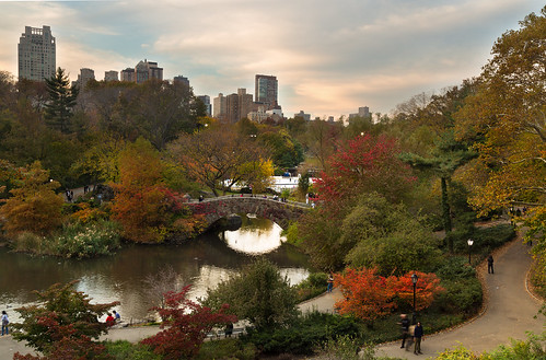 city nyc newyorkcity bridge autumn sunset usa newyork reflection fall canon unitedstates centralpark unitedstatesofamerica fallfoliage 5dmkiii