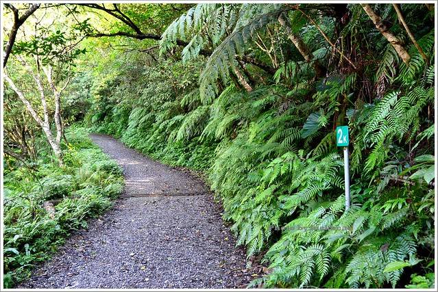 聖母山莊聖母登山步道宜蘭礁溪001-DSC_6595