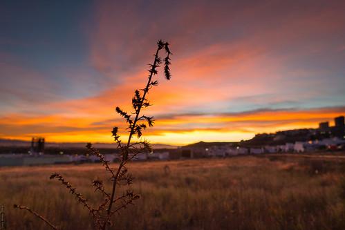 méxico sunrise amanecer sanluispotosí