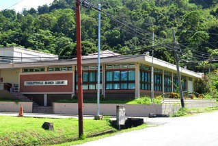 Charlotteville library