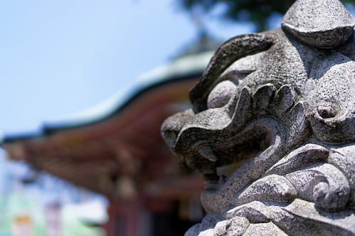 岩戸神社-狛犬