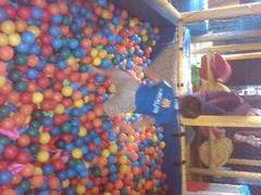 food(0.0), ball pit(1.0), toy(1.0),