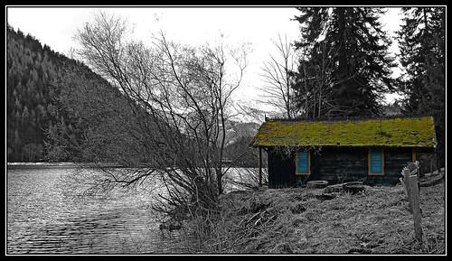 bw lake water landscape austria see österreich wasser hütte hut sw landschaft niederösterreich fischerhütte erlaufsee