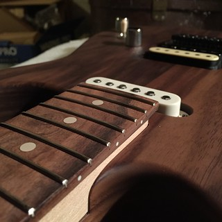 Walnut Soloist 2