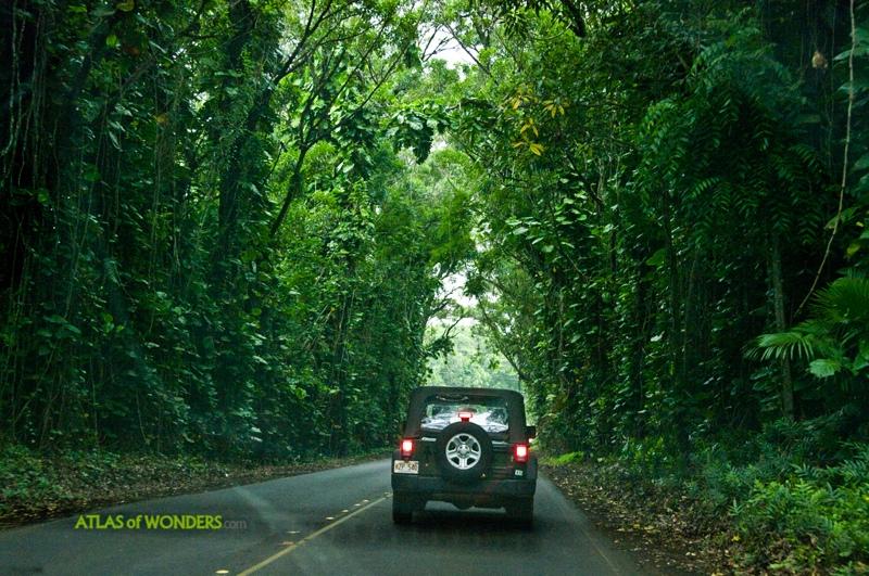 Jurassic Park Kauai
