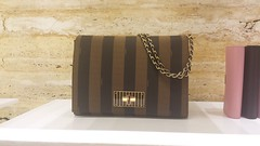 The perfect bag from Fendi