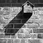 Birdhouse shadow