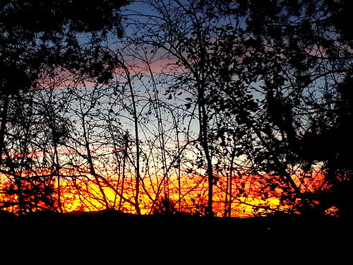 november silhouette sunrise nevada samsung crabapples sunvalley galaxysiiicellphonephotomobilephone