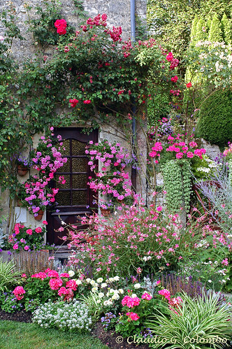 Blaye (Gironde, Aquitaine, France) : Garden at summer