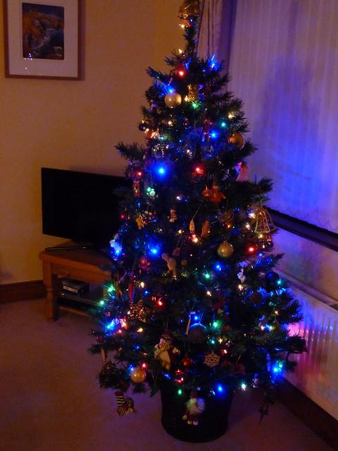 Christmas 2014 week 1 (2)