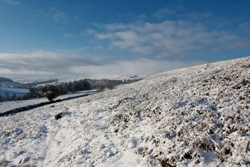 Kildale Moor above Baysdale