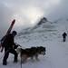 Výstup na vrchol Hoverla 2 061 m - 5. 1. 2015, foto: Oleksandr Malcev