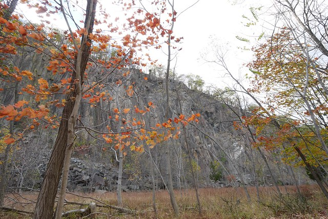 日, 2014-10-26 13:27 - Hook Mountain State Park