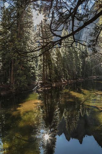 sun reflections rivers yosemitenationalpark yosemitevalley mountainranges canonphotography californialandscapes