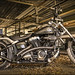 Beast in the Shed. by SteveKPhotography