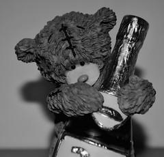 Celebrating Bear