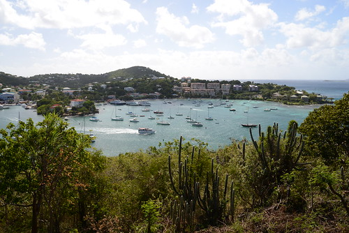 Cruz Bay as seen from Lind Point