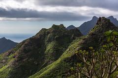 View Tenerife North