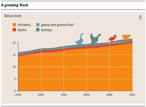 亞洲國家對家禽的肉食需求增長。