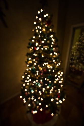 Christmas Tree Bokeh by Geoff Livingston