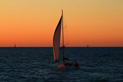 sailing at the golden hour - Hertzelia beach