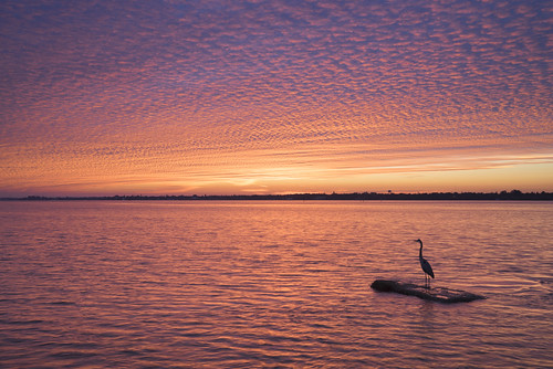 sunrise unitedstates florida palmetto landscapephotography manateecounty
