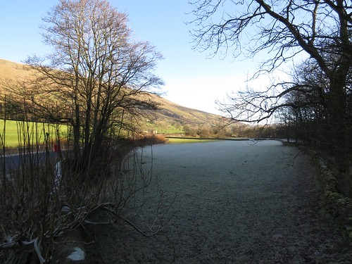 626 Frost in a field at Garsdale Bridge