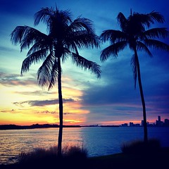 Two Palm #Sunset over Miami #picoftheday #photooftheday #instagood #instamood #igers