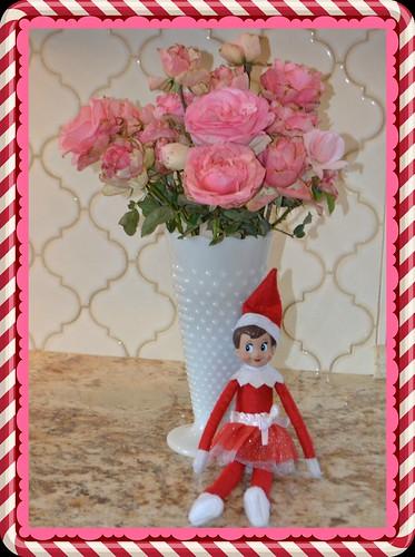 Flickr The Elf On A Shelf Pool