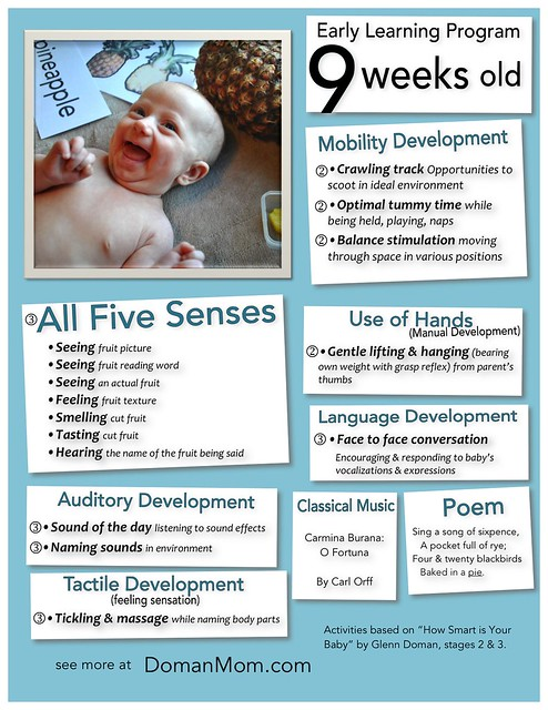 9 Weeks Old Early Learning Program