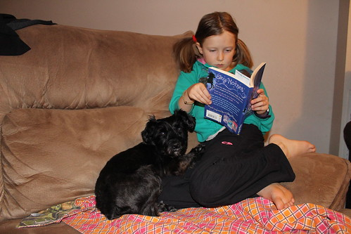 Reading with Bailey (1)