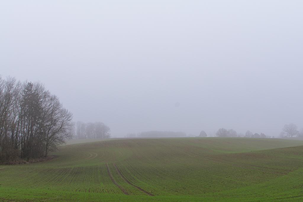 Landgehöft am Feldrain