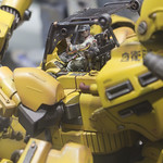 GBWC2014_World_representative_exhibitions-23