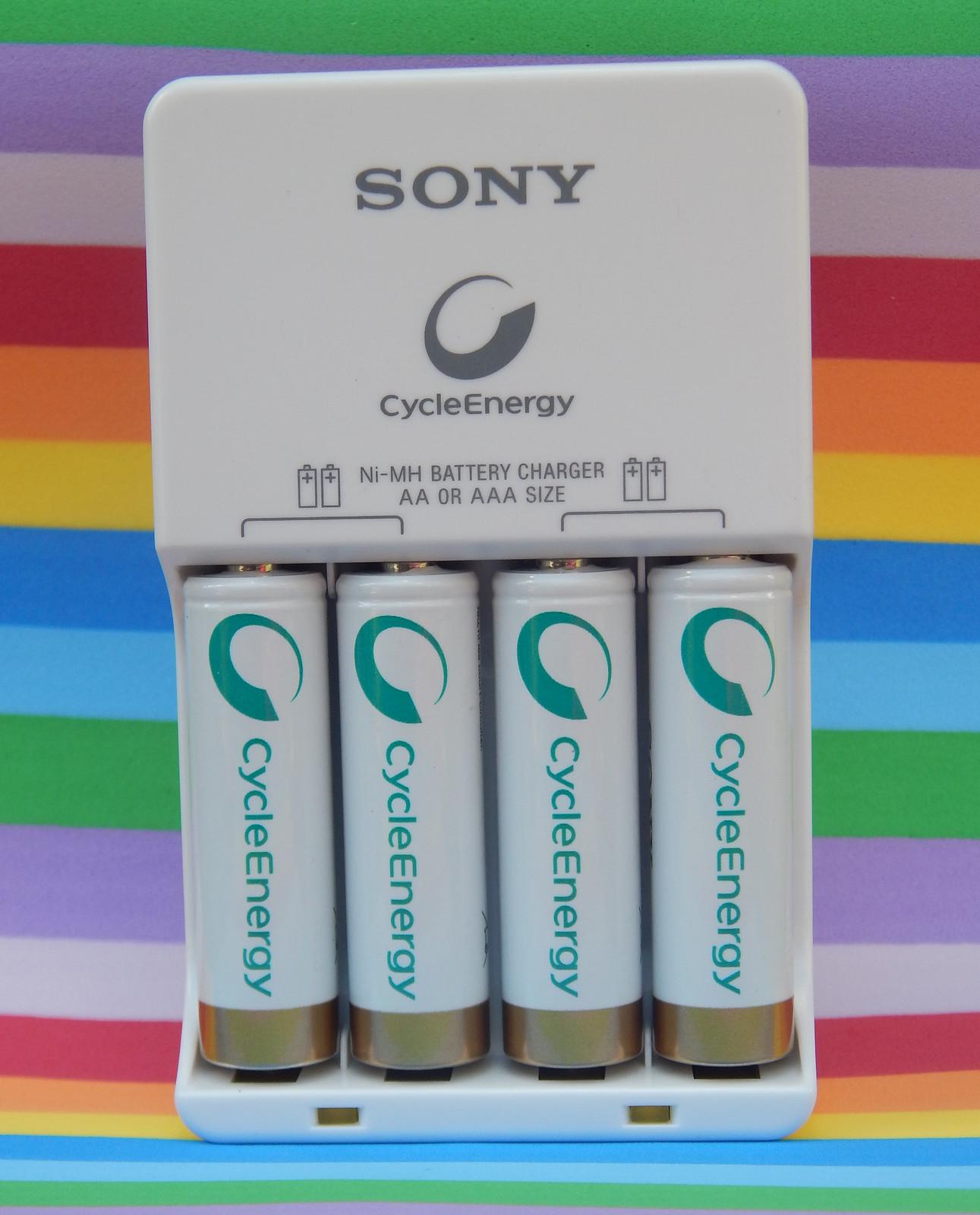 Carregador de pilhas Sony