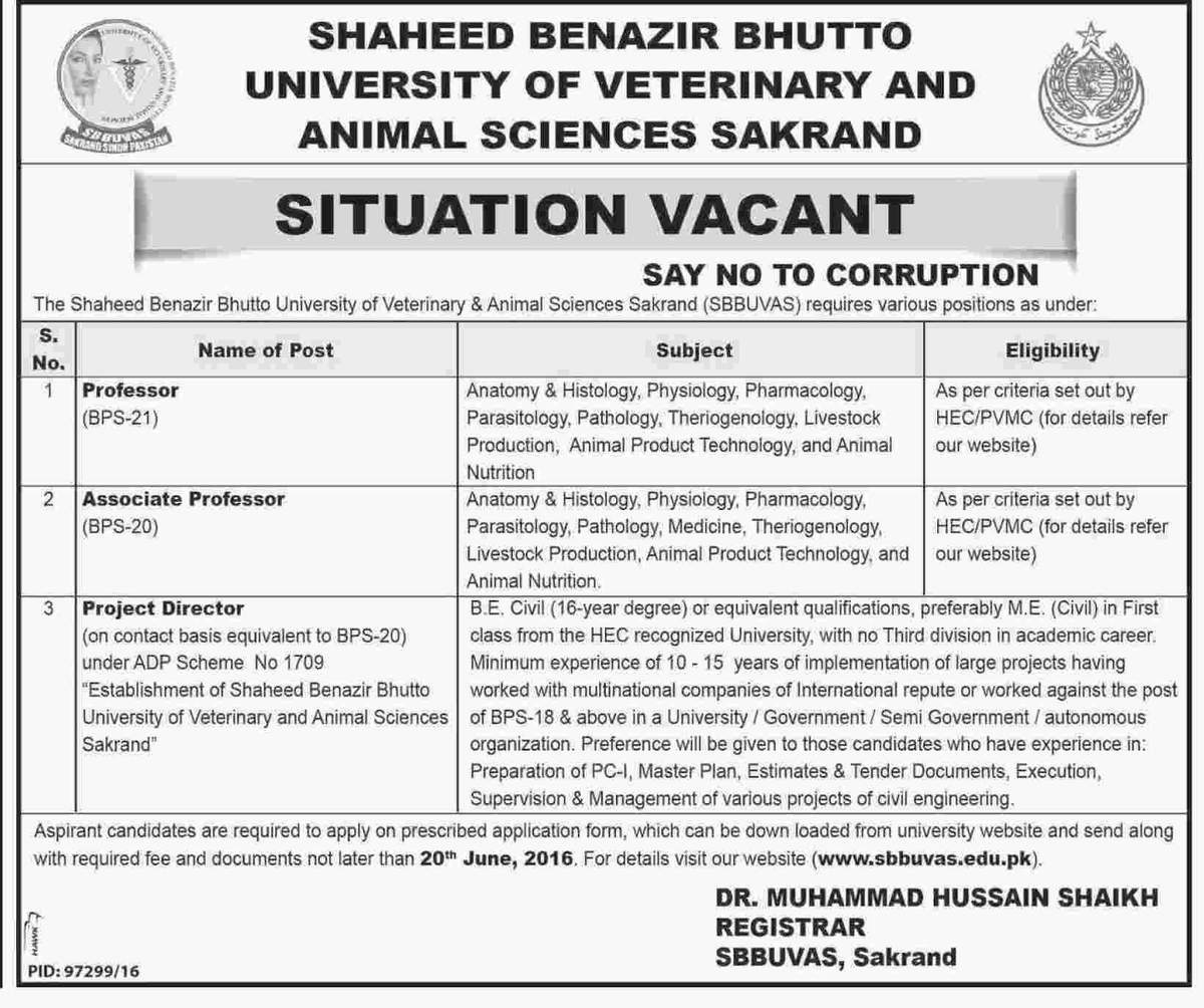 Shaheed Benazir Bhutto University of Veterinary and Animal Sciences Jobs
