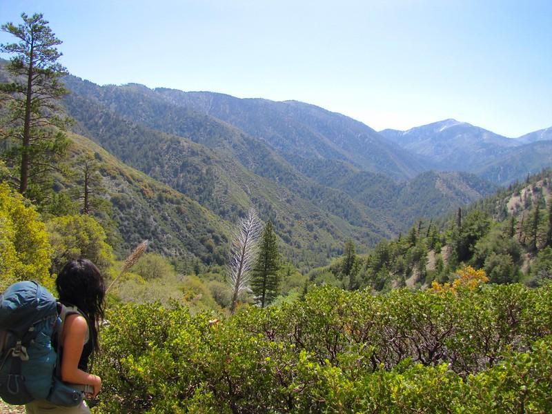 Heading down Vincent Gulch, Mine Gulch Trail