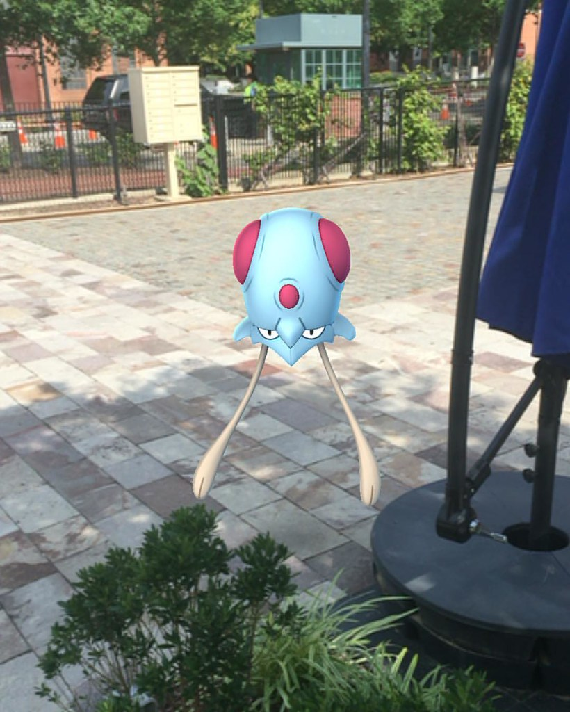 Saw this charming Tentacool hanging out on my walk. #PokémonGO
