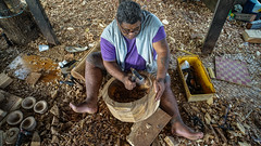 A wood carver at the Apia Cultural Village. Wooden carvings and other Samoan handicrafts are regularly produced and are commercially sold as souvenirs. Apia, Samoa
