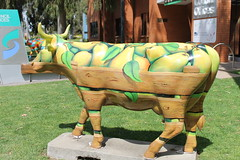 Greater Shepparton's MooovingArt Cows