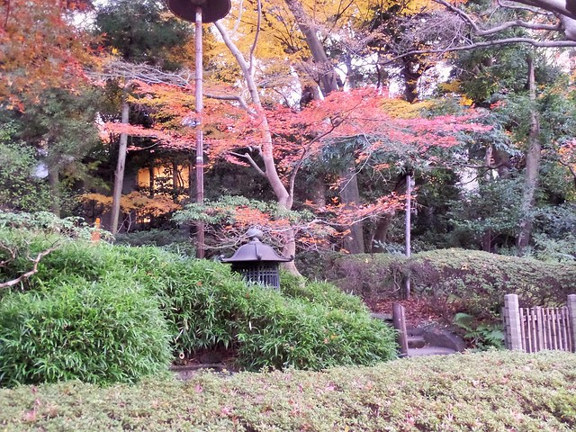 Foliage at Happo-en