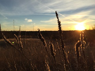 Sunrise at Tandy Hills
