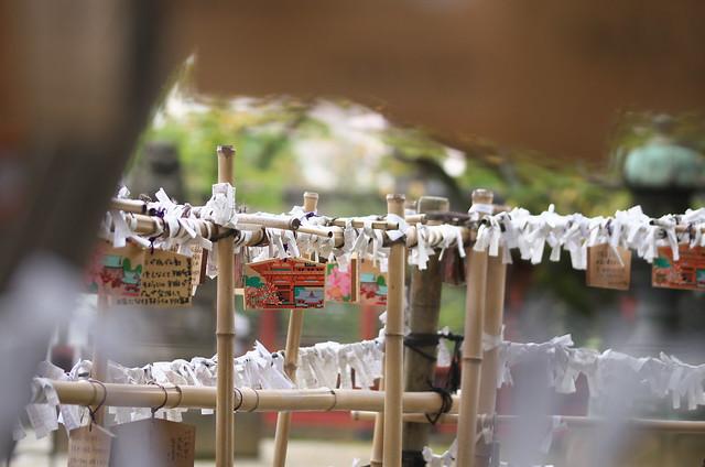 東京路地裏散歩 根津神社にて 2014年11月3日