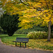 Bench in Autumn by Sven's extras (sven loach)