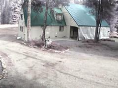 00606E91EAE6(countryman2) motion alarm at 20141128120305