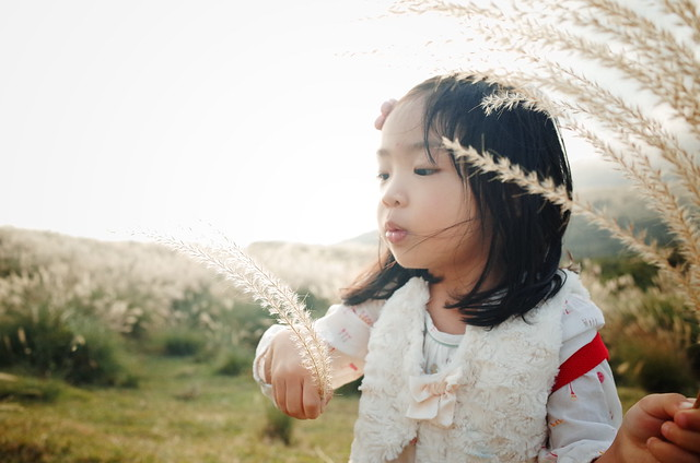 Fall ‧ Kid ‧ Miscanthus
