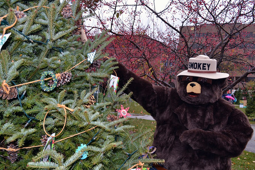 Smokey Bear helps to decorate the U.S. Forest Service's tree in Milwaukee's Cathedral Square Park during the 2014 U.S. Capitol Christmas Tree trek to Washington, D.C. (U.S. Forest Service)