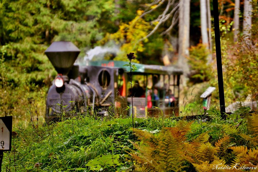 Vychylovka - Historical forest railway
