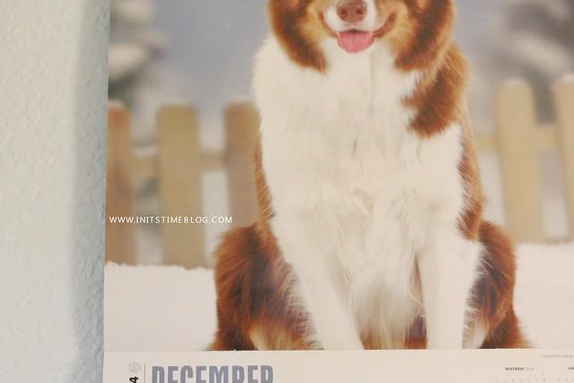 december1st